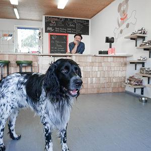 Fressbar Salzburg Hundefutter Barfen Galerie