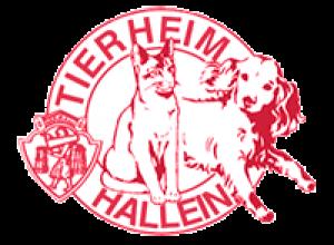 tierheim_hallein